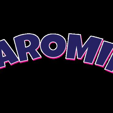 Sponsor 4 – PUFC – CAROMIK